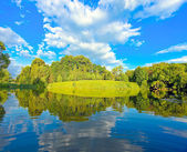 如诗如画的美丽的农村湖现场 — 图库照片