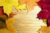 Beautiful brown board with autumnal leaves — Stock Photo