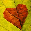 Royalty-Free Stock Photo: Autumn leaf with heart