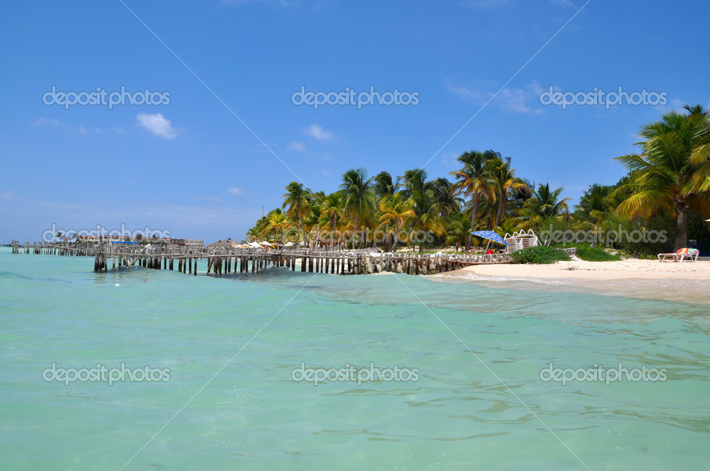 Perfect tropical beach in Isla Mujeres, Mexico, Yucatan  Stock Photo #6266244