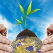 Save the planet - Foto de Stock  