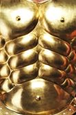 Close-up of golden armour — Foto Stock