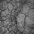 popękana gleby — Zdjęcie stockowe