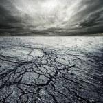 Storm in desert — Stock Photo