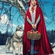 Stock Photo: Red hood with wolf