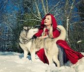 Red hood with a wolf — Stock Photo