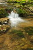 Stream flows into the lake — Stock Photo