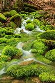 山中的小溪,长满苔藓的石头 — 图库照片