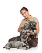 Attractive young woman with dogs — Stock Photo