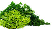 Parsley, dill and lettuce — Stock Photo