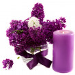 Lilacs in a Vase — Stock Photo