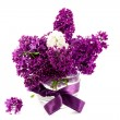 Lilacs — Stock Photo #5624972