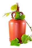 Wine jug and grape vine — Stock Photo