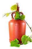 Wine jug and grape vine — Foto Stock