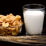 Cornflakes with milk — Stock Photo