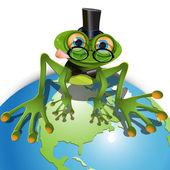 Green frog — Stock Vector