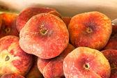 Ripe red peaches — Stock Photo