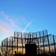 Stock Photo: Antennae with sky under sunset
