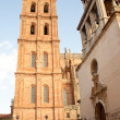 The Cathedral of Astorga — Stock Photo #6496319