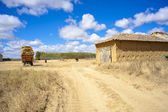 Rural scene in the countryside — Stock Photo