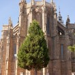 The Cathedral of Astorga — Stock Photo #6500516