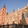 The Cathedral of Astorga — Stock Photo #6500599