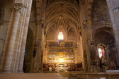 Interieur van de kathedraal van leon — Stockfoto