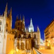 Royalty-Free Stock Photo: Night view of Burgos cathedral
