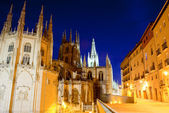 Night view of Burgos cathedral — Stock Photo