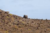 çöl kayalar — Stok fotoğraf