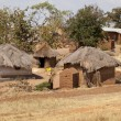 African Village — Stock Photo #6506575