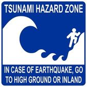 Tsunami hazard zone sign — Stock Vector