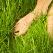 Stock Photo: Woman's bare feet