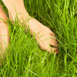 Woman's bare feet - Stock Photo
