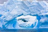 Antarktika buz dağı — Stok fotoğraf