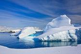 Icebergs in Antarctica — Stock Photo