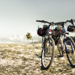Two bikes - Stock Photo