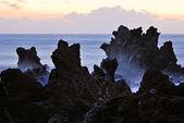 Ocean shore — Stock Photo