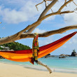 Stock Photo: Hammock on beaches on Seychelles islands