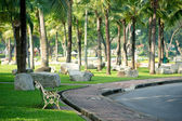 Bench in Lumphini park — Stock Photo