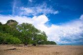 West Railay beach — Stock Photo