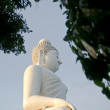 Big Buddha — Stock Photo #5436250