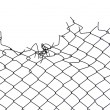 Gap of wire netting — Stock Photo