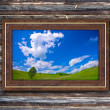 Picture frame to nature — Stock Photo