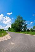 Kırsal yol — Stok fotoğraf