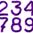 Violet digits - Stock Photo