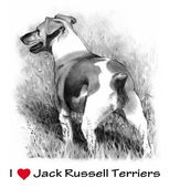 I Love Jack Russel Terriers — Stock Photo
