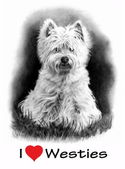 I Love (Heart) Westies, Pencil Drawing — Stock Photo