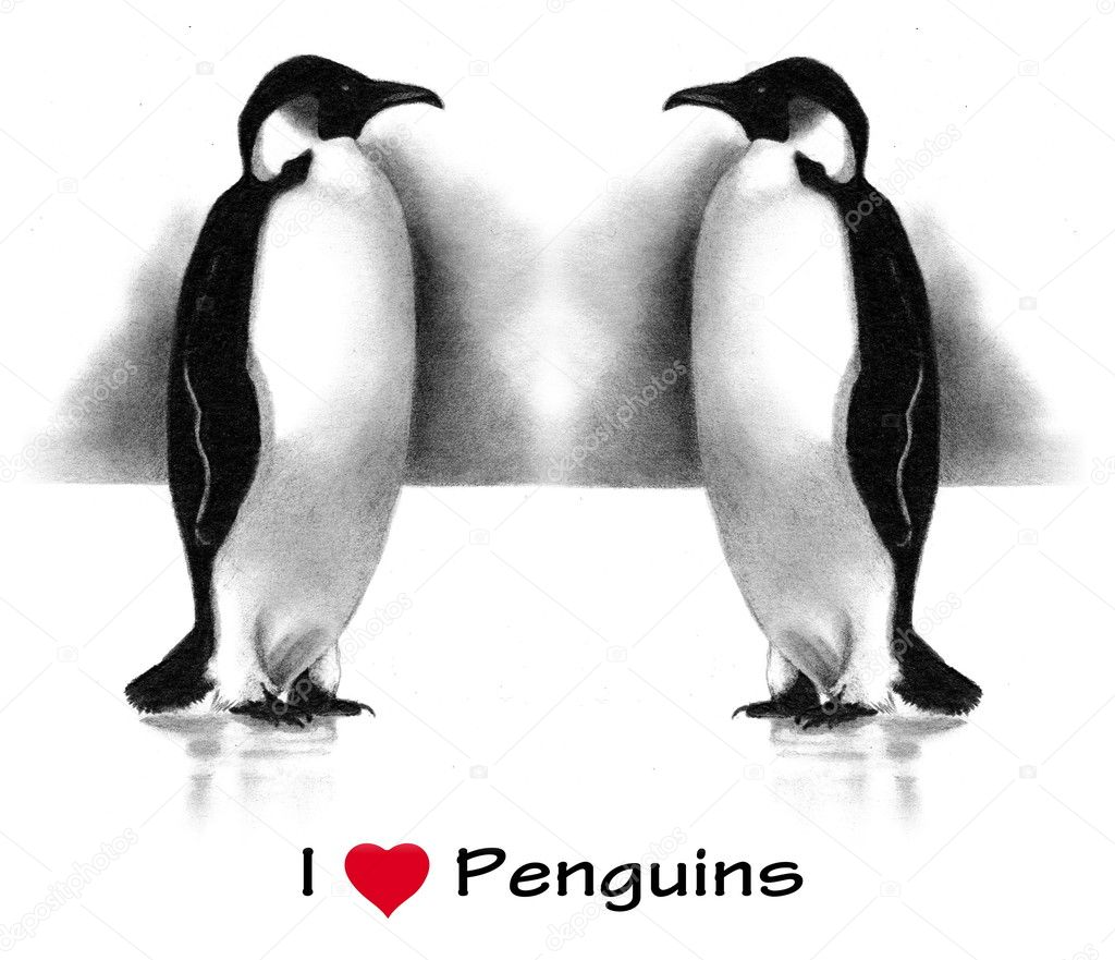 coloring pages penguins in love | I Love (Heart) Penguins: Pencil Drawing — Stock Photo ...