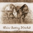 We're Getting Hitched: Western Wedding Invitation: Horses - Stock Photo